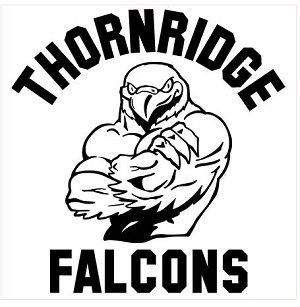 TR Falcons
